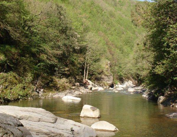 Il fiume Argentina et le gros rocher pour bronzer